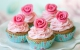 Розовые розы Капкейки